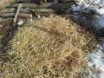 Third layer of dry rice straw